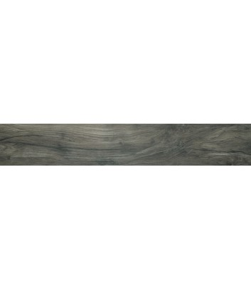 dettaglio superficie bark root