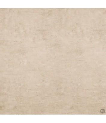 endymion paper dettaglio superficie